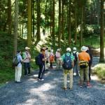 静かな山林から散策開始